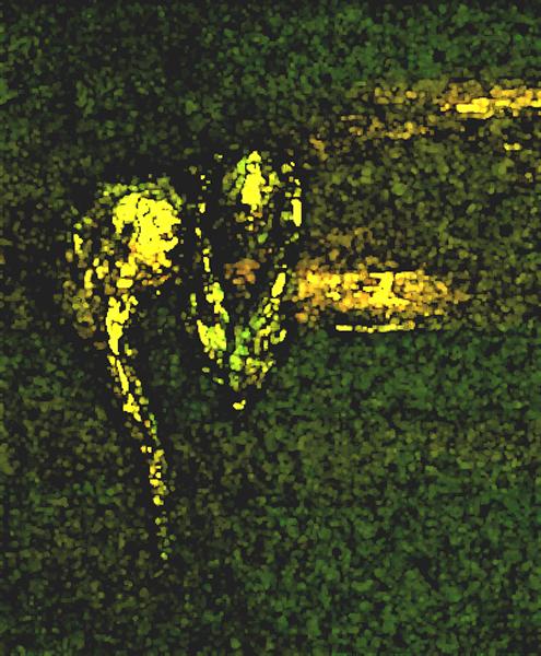07 Greul pamintului _ http://www.irinapetras.ro/Poze/carti/Greul_pamintului.jpg